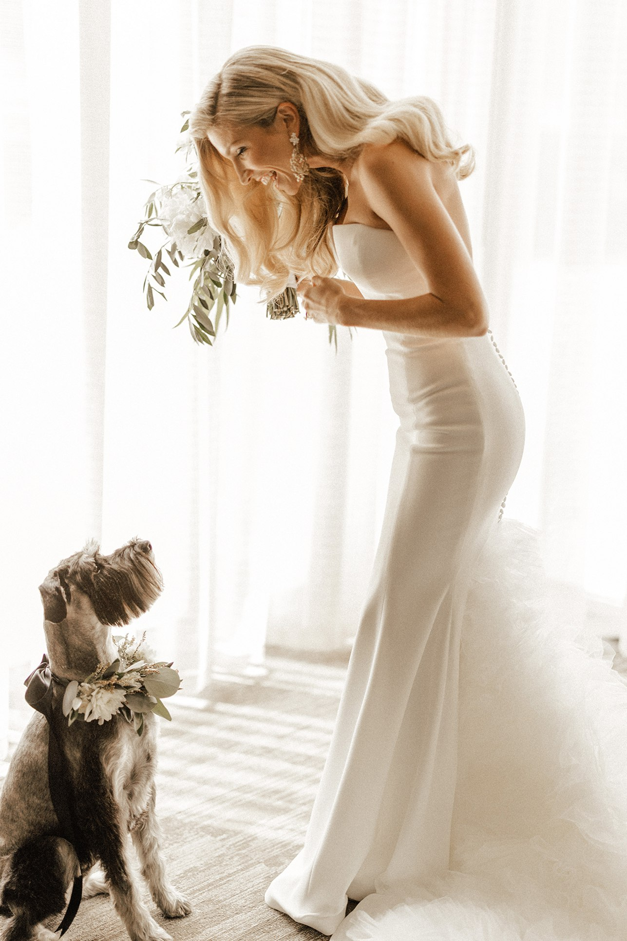 bride with schnauzer who has flower dog collar